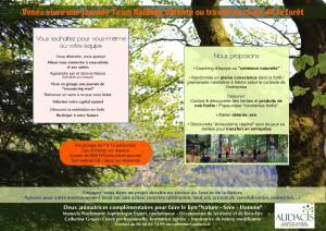 Audacis forêt V4 - copie